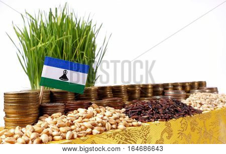 Lesotho Flag Waving With Stack Of Money Coins And Piles Of Wheat And Rice Seeds