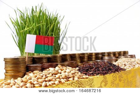 Madagascar Flag Waving With Stack Of Money Coins And Piles Of Wheat And Rice Seeds