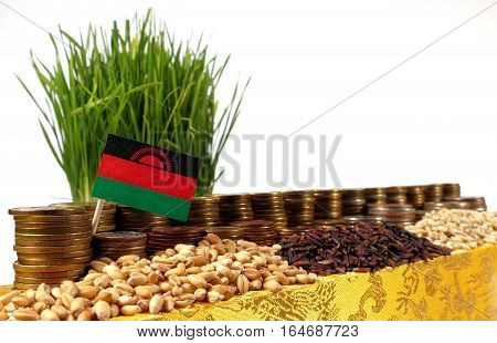 Malawi Flag Waving With Stack Of Money Coins And Piles Of Wheat And Rice Seeds