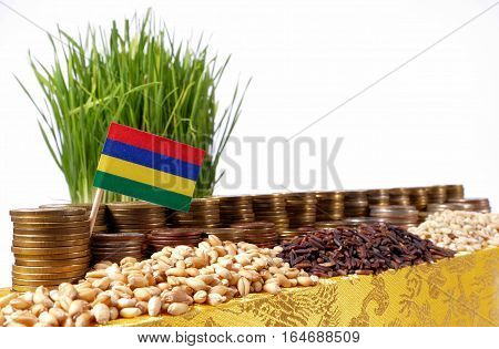 Mauritius Flag Waving With Stack Of Money Coins And Piles Of Wheat And Rice Seeds