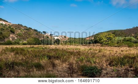 Portugal - Meadow In The Country