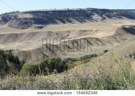 Ranch land bumps of ridges nature's landscape