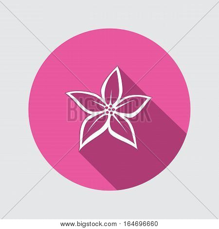 Orchid flower icons. Floral symbol. Round white sign on flat button with long shadow. Vector