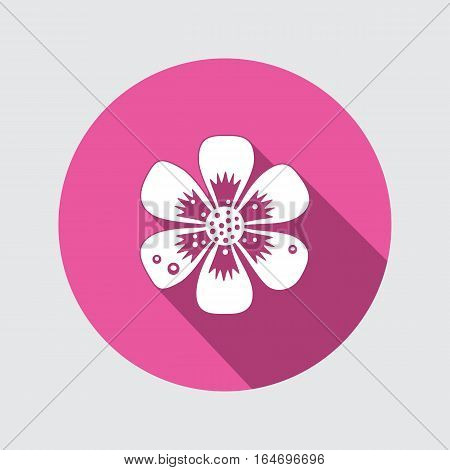 Primula flower icons. Spring flowers. Floral symbol. Round flat icon with long shadow. May be used in cuisine. Vector isolated.