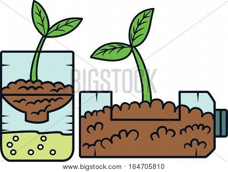 Bottled Plant. Plant Planted in Bottle Vector Illustration.