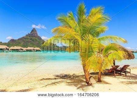 View of the Otemanu mountain with palm tree and stunning lagoon Bora-Bora Tahiti French Polynesia