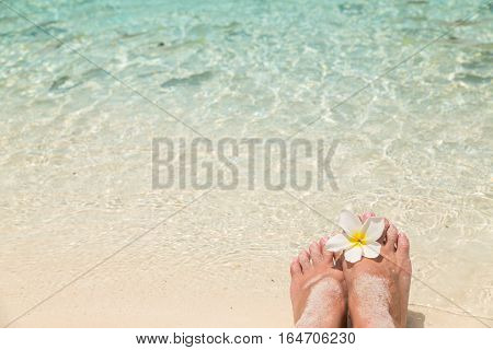 Bare female feet with frangipani flower in the water of the sea with small tropical fish surrounded holiday concept.