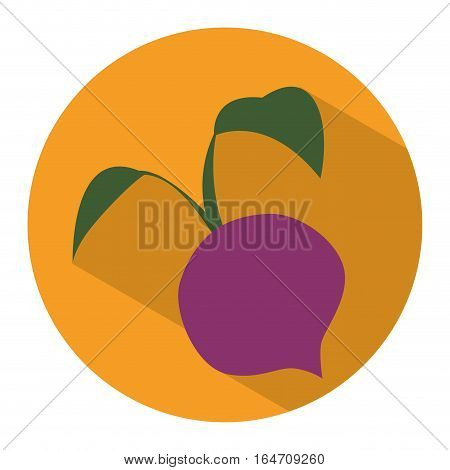 beetroot vegetable icon over yellow circle and white background. colorful design. vector illustration