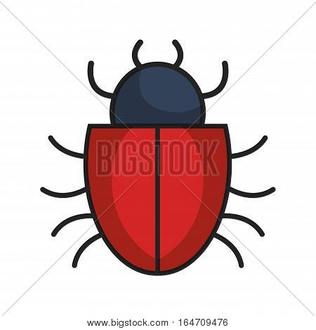 bug alert isolated icon vector illustration design