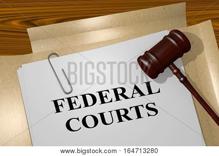 Federal Courts - Legal Concept