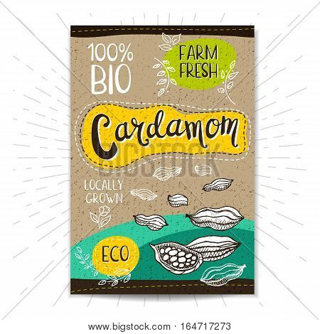 Colorful label in sketch style, food, spices, cardboard textured background. Cardamom Spice. Bio, eco, farm, fresh. locally grown. Hand drawn vector illustration