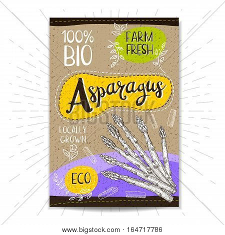 Colorful label in sketch style, food, spices, cardboard textured background. Asparagus Vegetables. Bio, eco, farm, fresh. locally grown. Hand drawn vector illustration