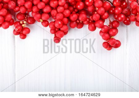 Schisandra chinensis or five-flavor berry. Fresh red ripe berry on white. Food background.