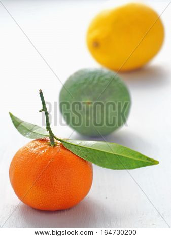 Three pieces of fruit in a row on a white background. Selective focus on the front.
