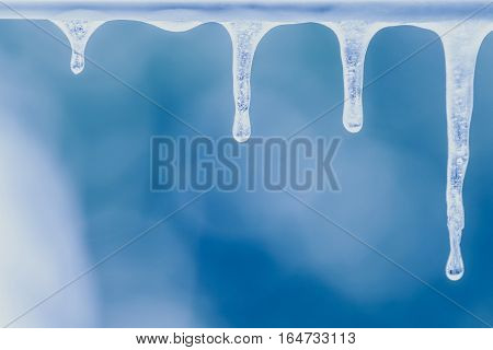 bunch of real icicle in close focus of ice drop ice stalactites ice formations in a frozen day
