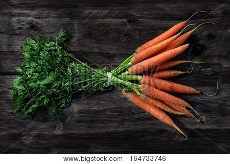 Bunch of carrots with fresh green leaves on a dark gray wooden table top view from above on the healthy organic vegetable