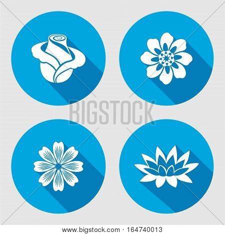 Flower icons set. Rose, chamomile, blue poppy, daisy, gowan, lily, waterlily. Floral symbols. Round circle flat sign with long shadow. Vector
