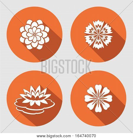 Flower icons set. Lily, chamomile, blue poppy, daisy, gowan. Floral symbols. Round circle flat sign with long shadow. Vector