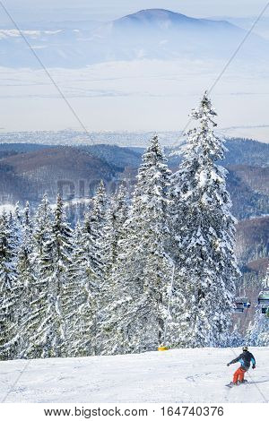 Winter landscape in the mountains with snow covering the pines and a snowboarder going down the ski slope. View of the Poiana Brasov ski resort from Romania in the winter season.