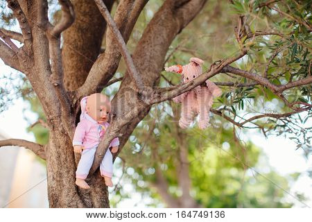 lost toys on tree.  old toys lost on tree