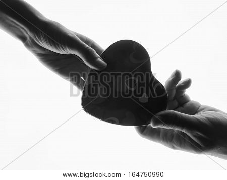 Silhouette hands. Present in man's and woman hands in the form of heart white background. Heart symbol with hand. Valentines day present. The man gives a woman a gift
