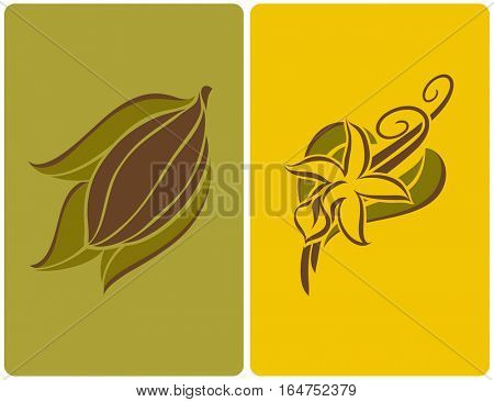 Cocoa bean with leaves and vanilla flower with pods. Vector illustration.