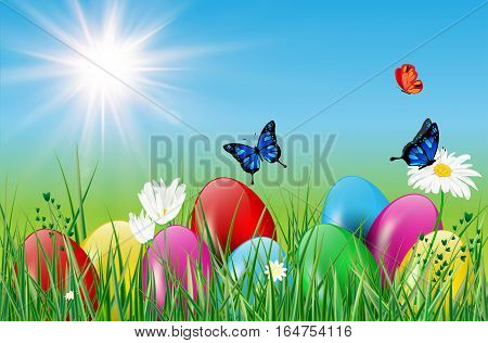 Spring motive with easter eggs grass butterflies sun and flowers. Vector illustration.