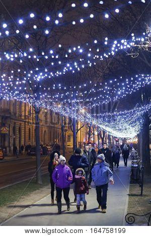 Illuminated Tree Alley