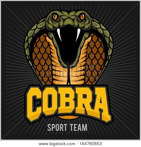 Cobra Mascot - sport team logo on dark background.