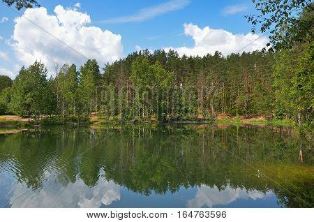 Pines on lake near Saint Petersburg Russia
