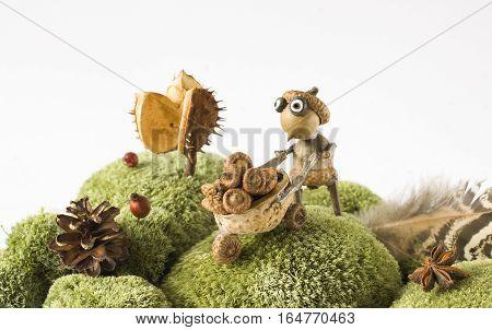 fairytale forest creature collecting acorns autumn season design