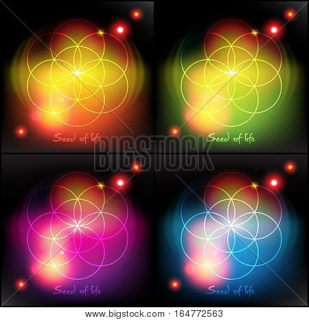 Seed of life. Sacred geometry. Vector illustration. Eps10.
