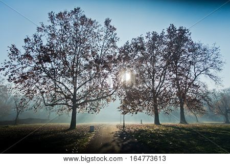 Autumn sunrise at Kalemegdan park in Belgrade, Serbia