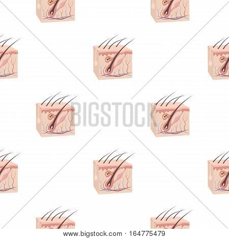 Skin icon in cartoon style isolated on white background. Organs pattern vector illustration.