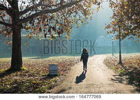Woman walking in a park on a sunny autumn morning, Kalemegdan, Serbia