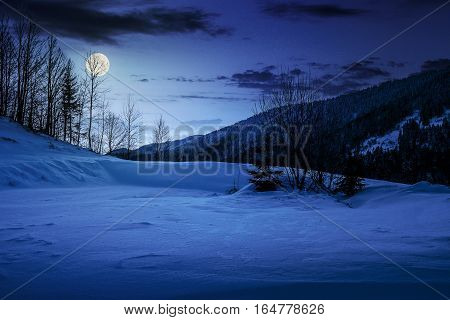 Trees On Snowy Meadow In Mountains At Night