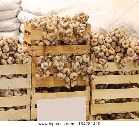 Crates Of White Garlic For Sale