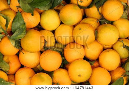 Oranges Without Chemical Treatments With Green Leaves