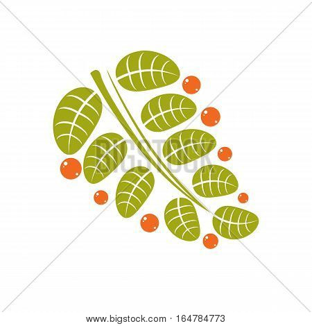 Spring Leaf Simple Vector Icon, Nature And Gardening Theme Illustration. Stylized Tree Leaf With Ora