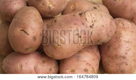Many unpeeled raw red potatoes as background closeup horizontal view