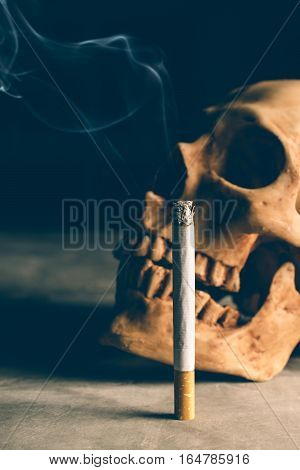abstract still life Skull of a Skeleton with Burning Cigarette stop smoking campaign concept with copy space.