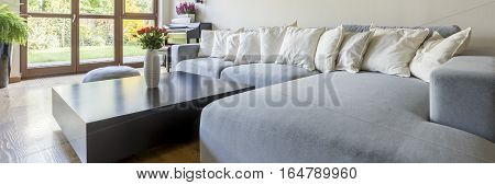 Room With Extra Large Sofa