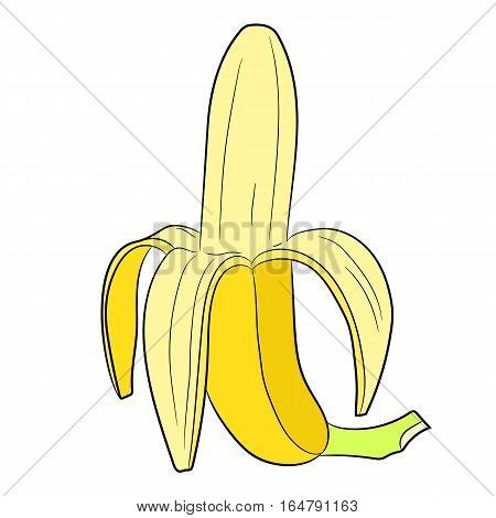 half peeled banana vertical of vector illustrations