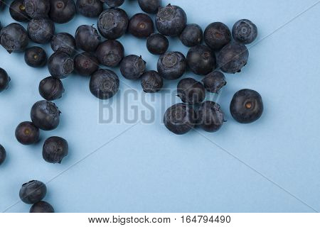 fresh blueberries fruit on the blue background