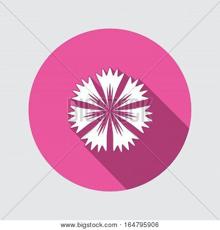 Cornflower, blue poppy, knapweed flower icons. Spring floral, medicinal herbs symbol. Round circle flat icon with long shadow. Vector