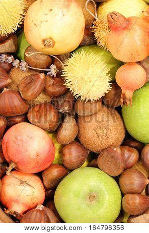 Kiwi Chestnuts Pomegranates Big Apples