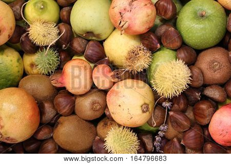 Kiwi Chestnuts Pomegranates Apples And Other Fruits
