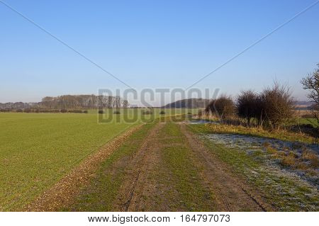Bridleway And Agricultural Scenery