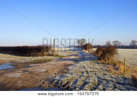 Scenic Icy Footpath