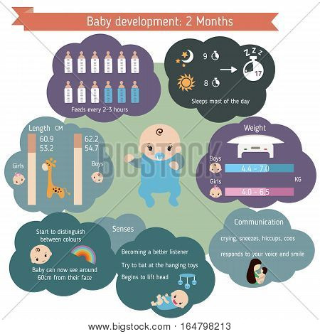 Child development infographics. Baby Growth Guide. Age 2 months.